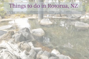 Things to do in Rotorua